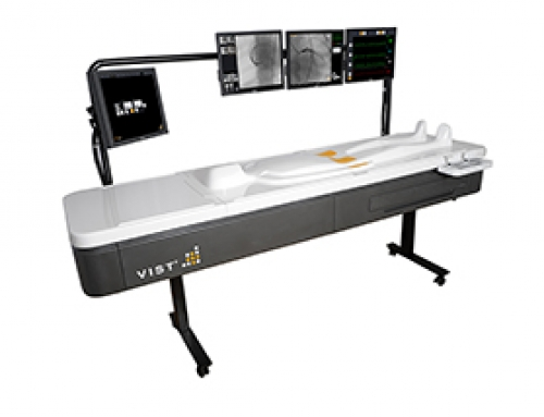 VIST-Lab Endovascular Simulator