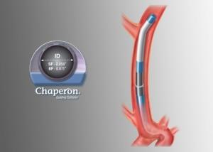 chaperon_grey