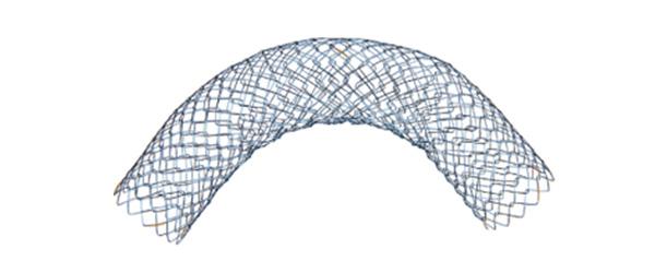 D enteral colonic stent c